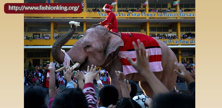 Christmas Party in Thailand With Elephant Like Santa Claus